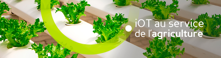 projet iot agriculture